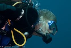 BD-121127-Aqaba-7183-Homo-sapiens.-Linnaeus.-1758-[Diver].jpg